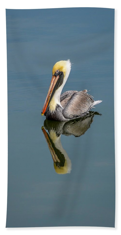 Brown Pelican Reflection Hand Towel featuring the photograph Brown Pelican Reflection by Debra Martz