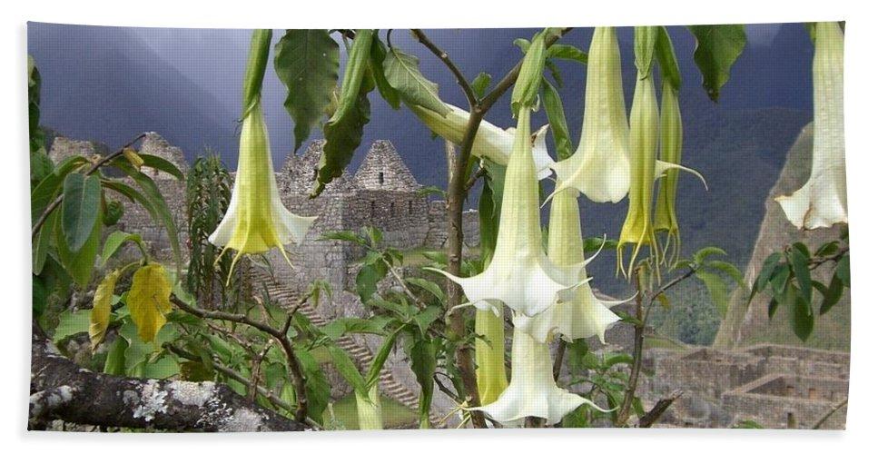 Brugmansia Bath Sheet featuring the photograph Brugmansia At Machu Picchu by Barbie Corbett-Newmin