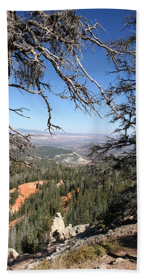 Trees Bath Sheet featuring the photograph Bryce Canyon Overlook With Dead Trees by Christiane Schulze Art And Photography