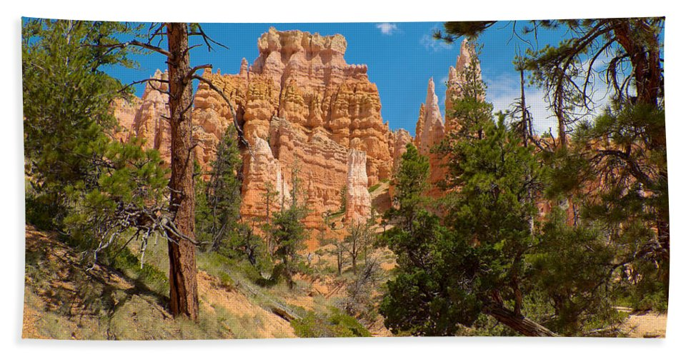 Bryce Canyon Hand Towel featuring the photograph Bryce Hills 2 by Richard J Cassato