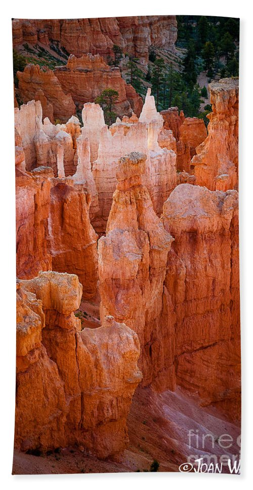 Bryce National Park Hand Towel featuring the photograph Bryce Hoodoos by Joan Wallner