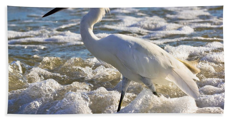 Beach Hand Towel featuring the photograph Bubbles Around Snowy Egret by Ed Gleichman