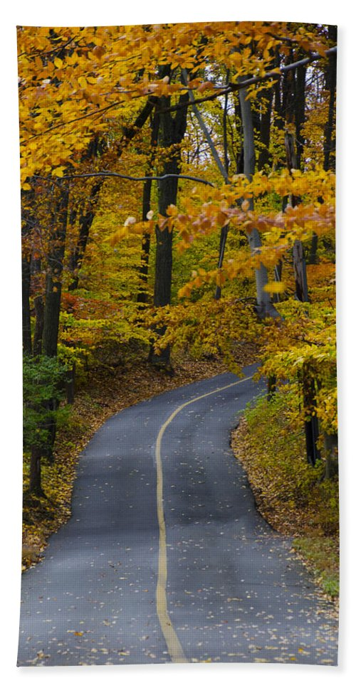 Bucks Hand Towel featuring the photograph Bucks County Road In Autumn by Bill Cannon