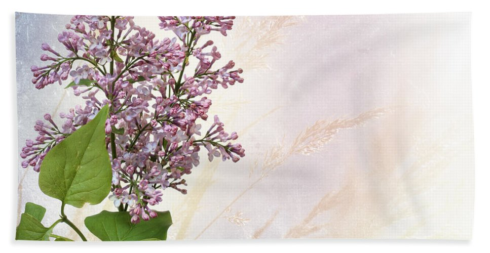 Bloom Hand Towel featuring the photograph Budding Lilac Flowers by Paul Fell