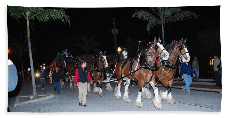 Edison Parade Of Lights Bath Sheet featuring the photograph Budwiser Clidsdale Horses by Robert Floyd