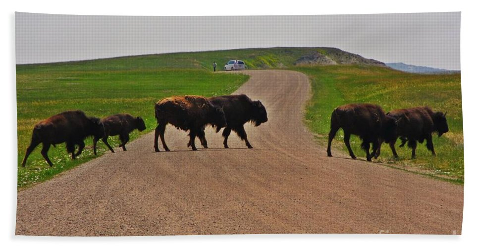 Buffalo Crossing Hand Towel featuring the photograph Buffalo Crossing by John Malone