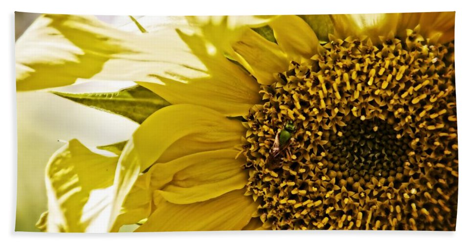 Sunflower Bath Sheet featuring the photograph Bug In The Sunflower by Alice Gipson