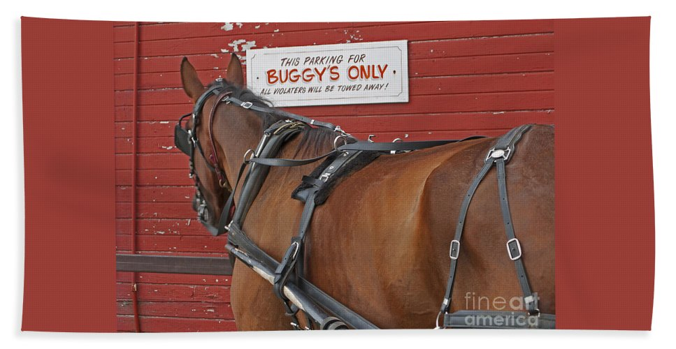 Amish Bath Towel featuring the photograph Buggy Attached by Ann Horn