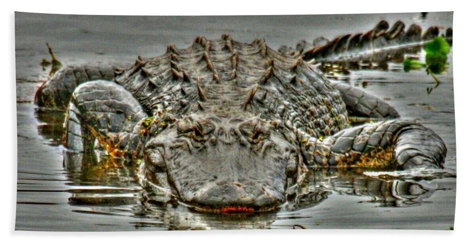 Alligator Hand Towel featuring the photograph Bull Gator On Watch by Myrna Bradshaw