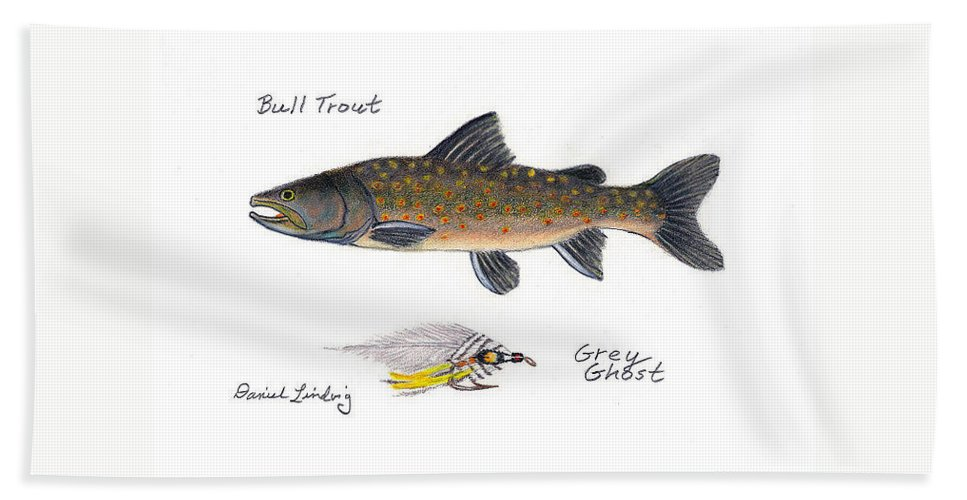 Fishing Bath Sheet featuring the drawing Bulltrout And Grey Ghost Fly by Daniel Lindvig
