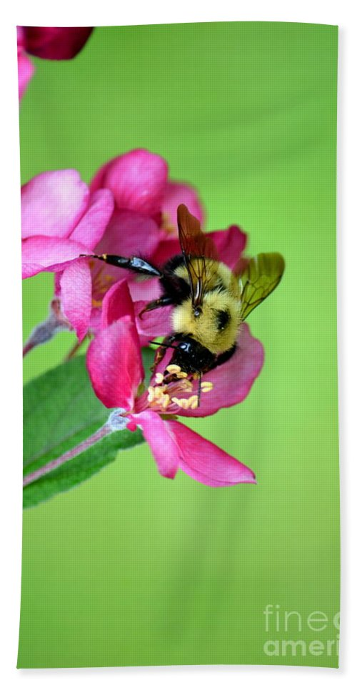 Insect Hand Towel featuring the photograph Buzz Time by Jaunine Roberts