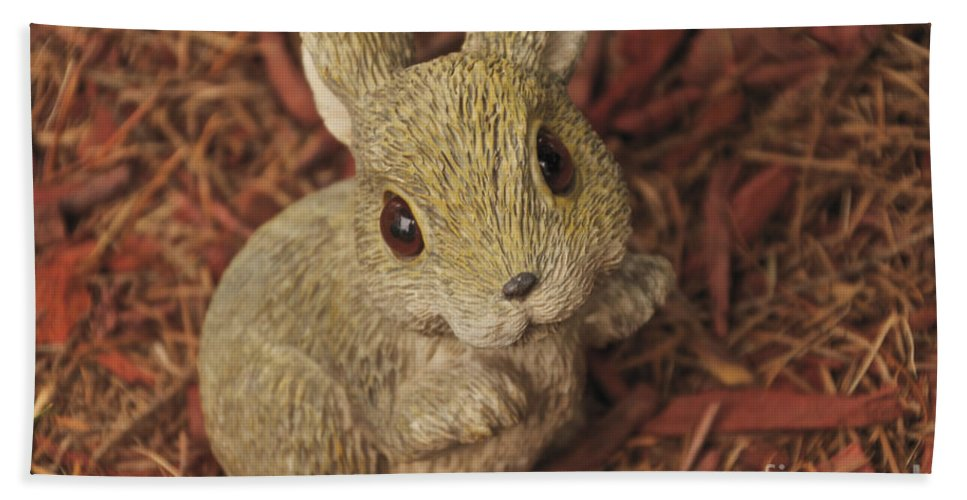 Bunny Hand Towel featuring the photograph Bunny by William Norton