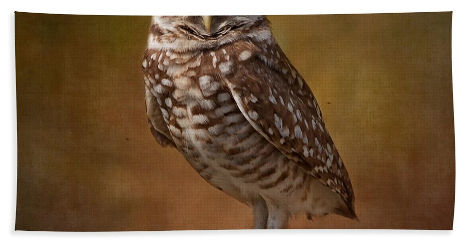 Wildlife Hand Towel featuring the photograph Burrowing Owl Portrait by Kim Hojnacki