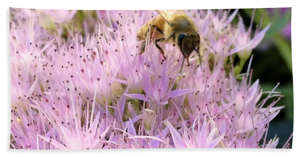 Matt Matekovic Bath Towel featuring the photograph Busy Bee by Photographic Arts And Design Studio