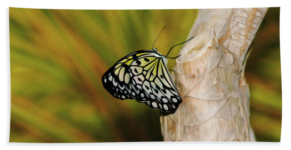Butterfly Hand Towel featuring the photograph Butterfly 3 by Tracy Winter