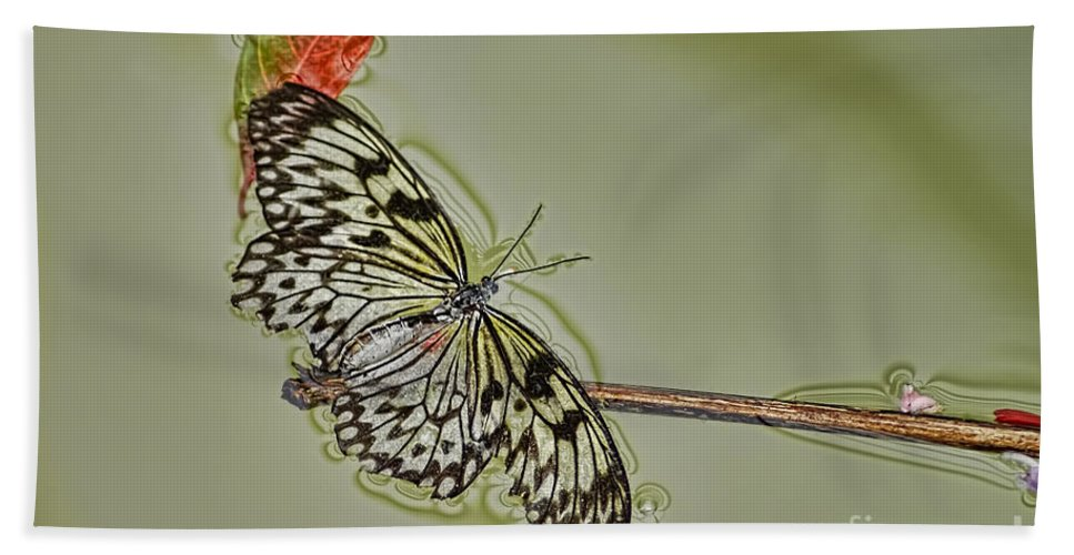 Butterfly Hand Towel featuring the photograph Butterfly Haiku by Olga and Robert W Hamilton Jr