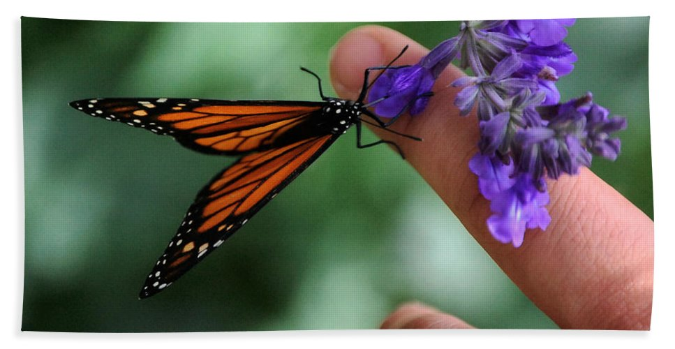 Butterfly Bath Sheet featuring the photograph Butterfly by Leticia Latocki