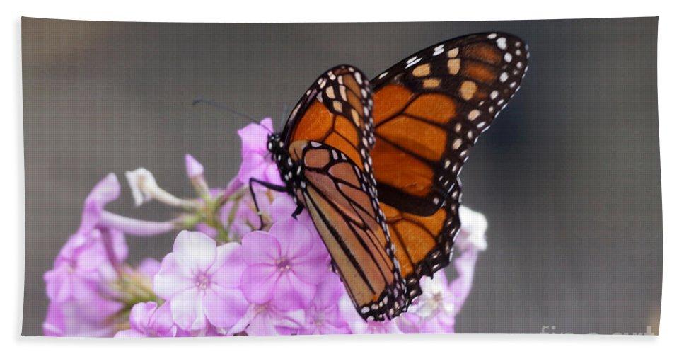 Butterfly Bath Sheet featuring the photograph Butterfly On Phlox by Lori Tordsen