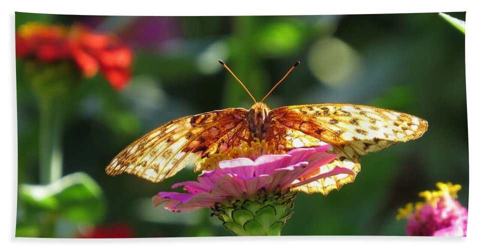 Butterfly Hand Towel featuring the photograph Fritillary Butterfly On Zinnia by MTBobbins Photography