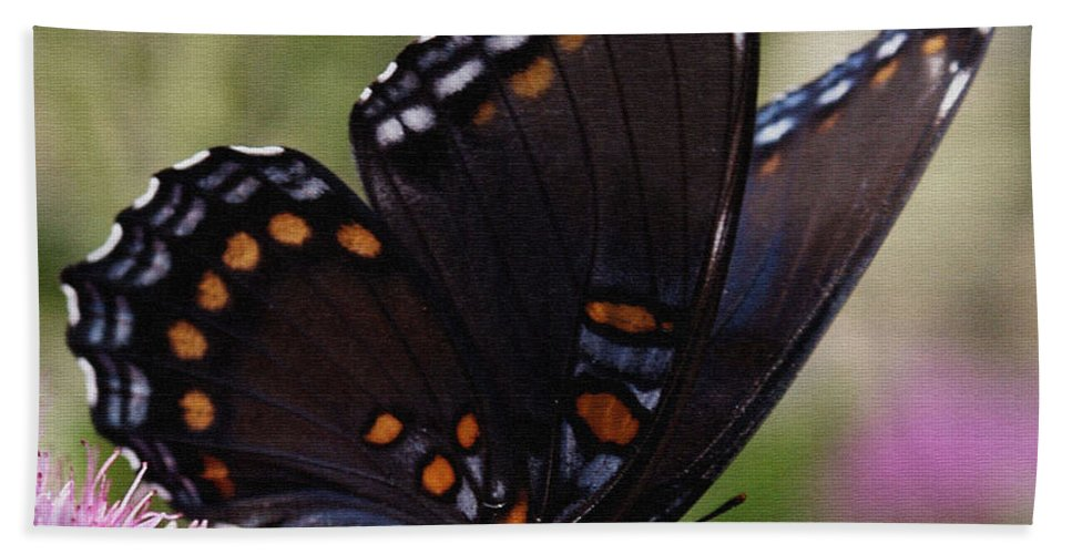 Butterfly Hand Towel featuring the photograph Butterfly Wings by James C Thomas
