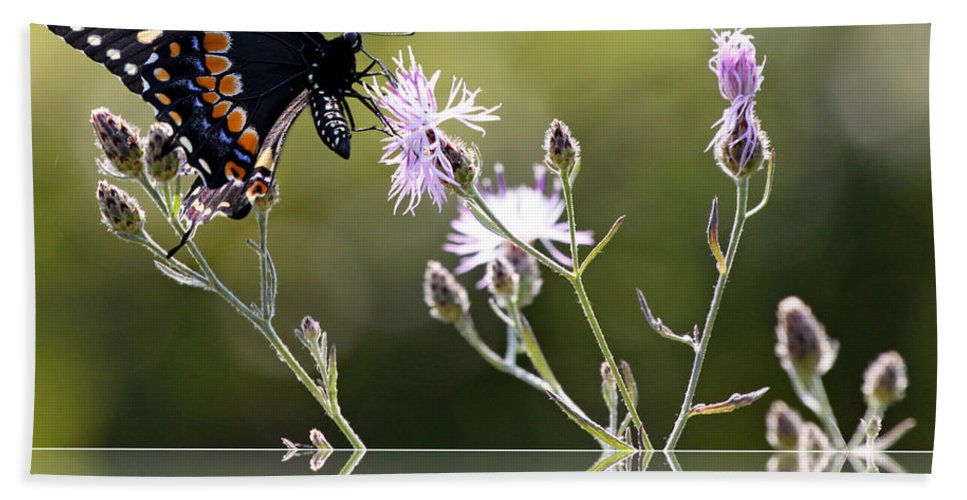 Nature Hand Towel featuring the photograph Butterfly With Reflection by Eleanor Abramson