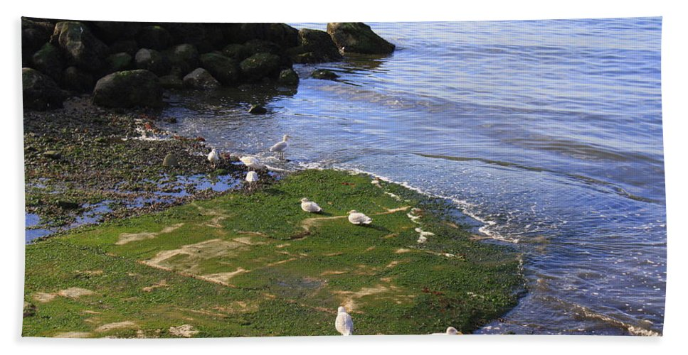 By The Shoreline Hand Towel featuring the photograph By The Shoreline by Dora Sofia Caputo Photographic Design and Fine Art