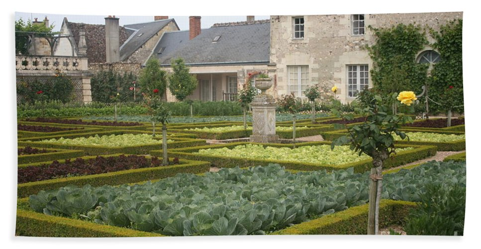 Cabbage Hand Towel featuring the photograph Cabbage Garden Chateau Villandry by Christiane Schulze Art And Photography
