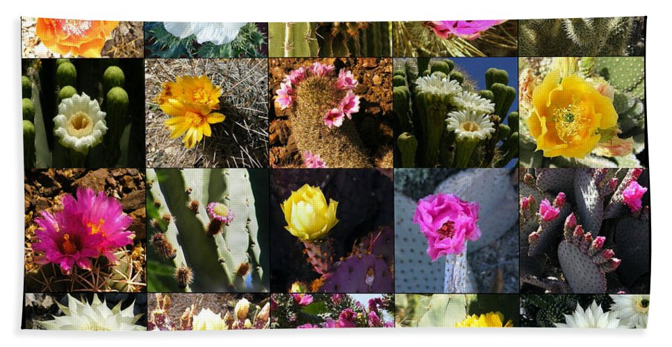 Flowers Hand Towel featuring the photograph Cactus Collage by Marilyn Smith