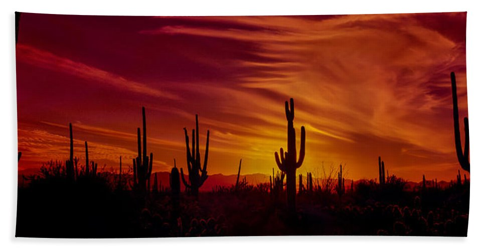 Cactus Hand Towel featuring the photograph Cactus Glow by Mary Jo Allen