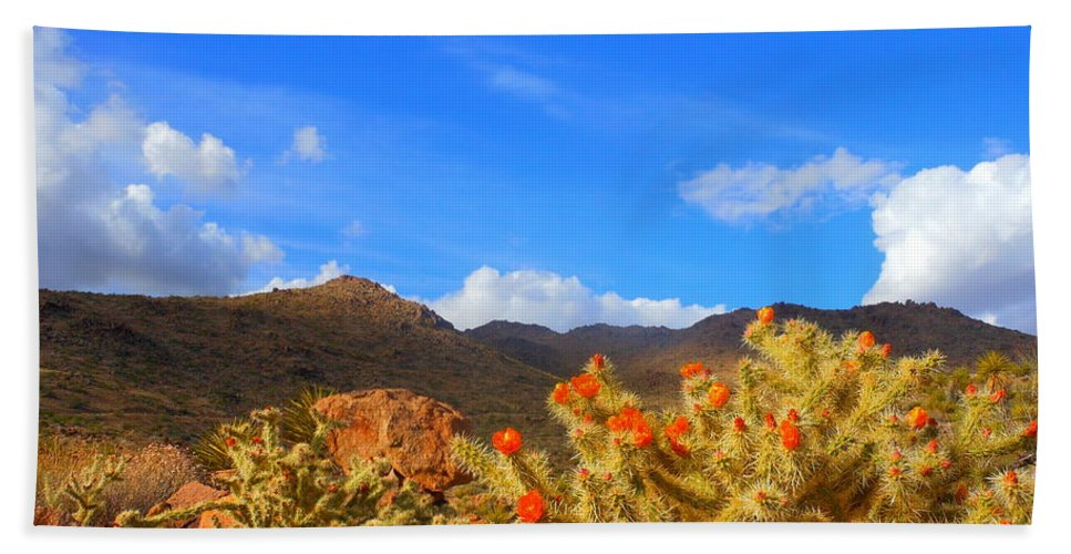 Landscape Bath Sheet featuring the photograph Cactus In Spring by James Welch
