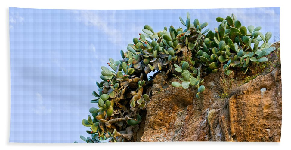 Cactus Hand Towel featuring the photograph Cactus On A Cliff by Artur Bogacki