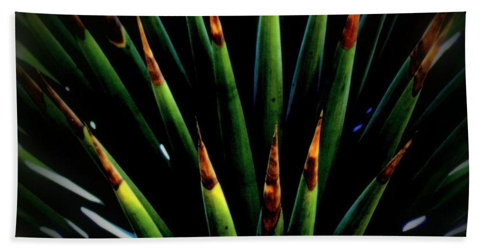 Cactus Hand Towel featuring the photograph Cactus Spines by Scott Hill