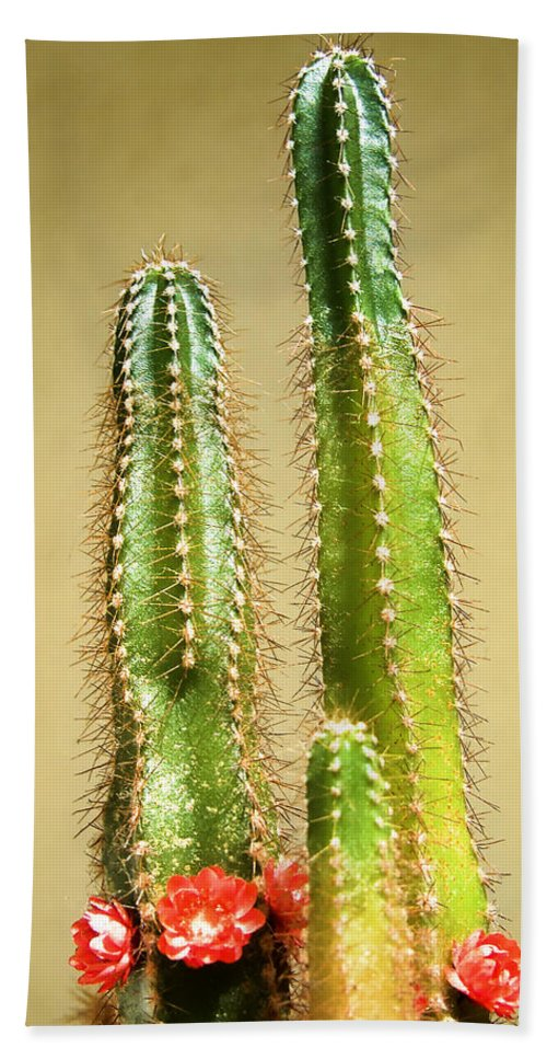 Cactus Hand Towel featuring the photograph Cactus Towers by Carlos Vieira