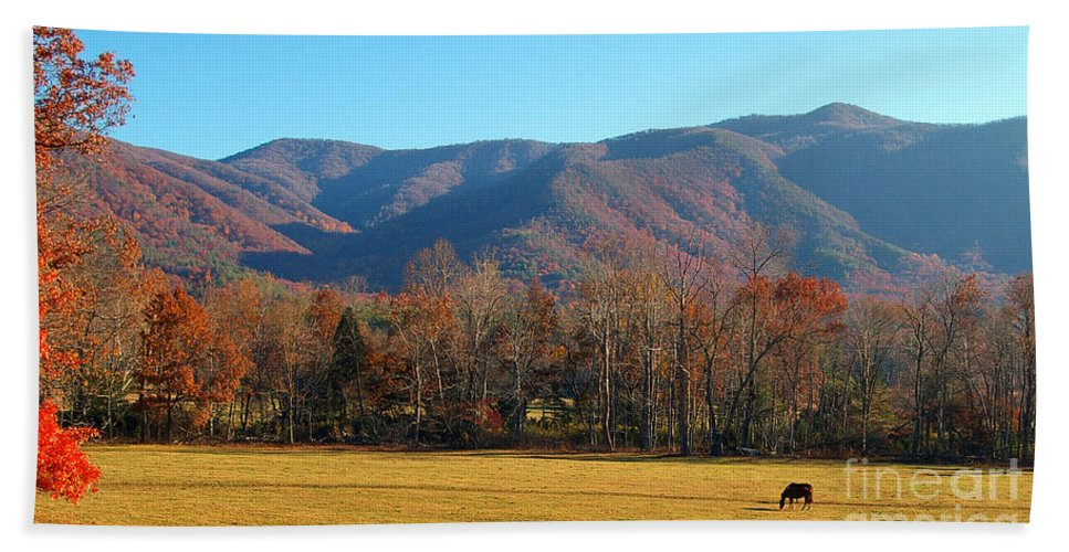 Fall Bath Sheet featuring the photograph Cades Cove Loop 2 by Nancy L Marshall
