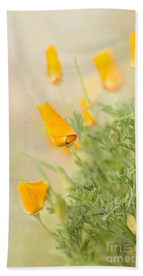 California Hand Towel featuring the photograph California's Poppy by Marilyn Cornwell