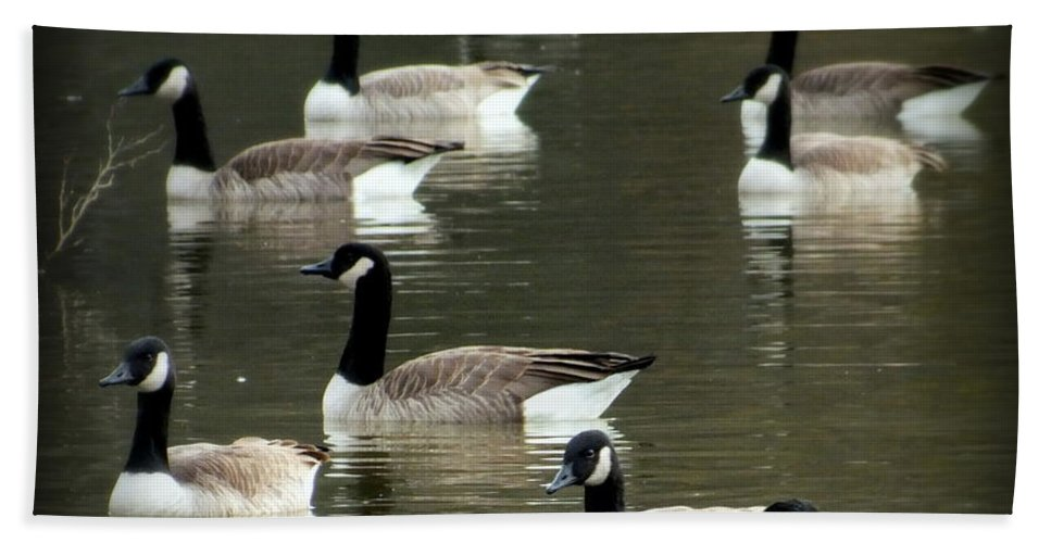 Waterscapes Hand Towel featuring the photograph Calm Waters by Karen Wiles