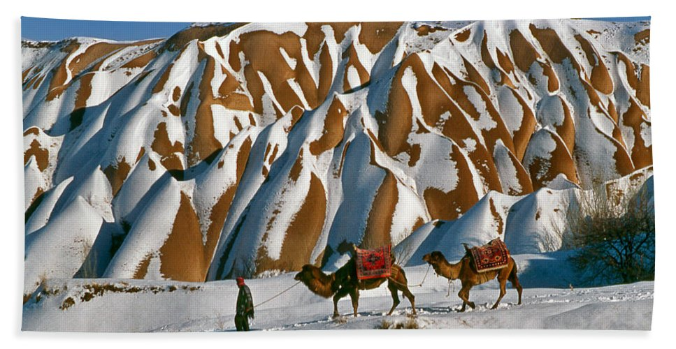 Anatolia Hand Towel featuring the photograph Camels On The Snow by Ayhan Altun