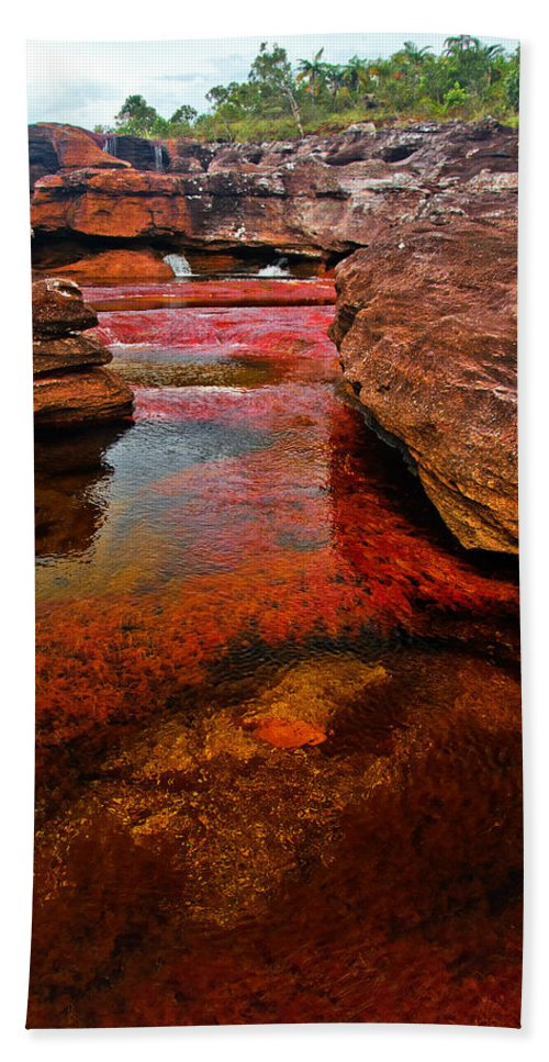 America Bath Sheet featuring the photograph Cano Cristales by Jess Kraft