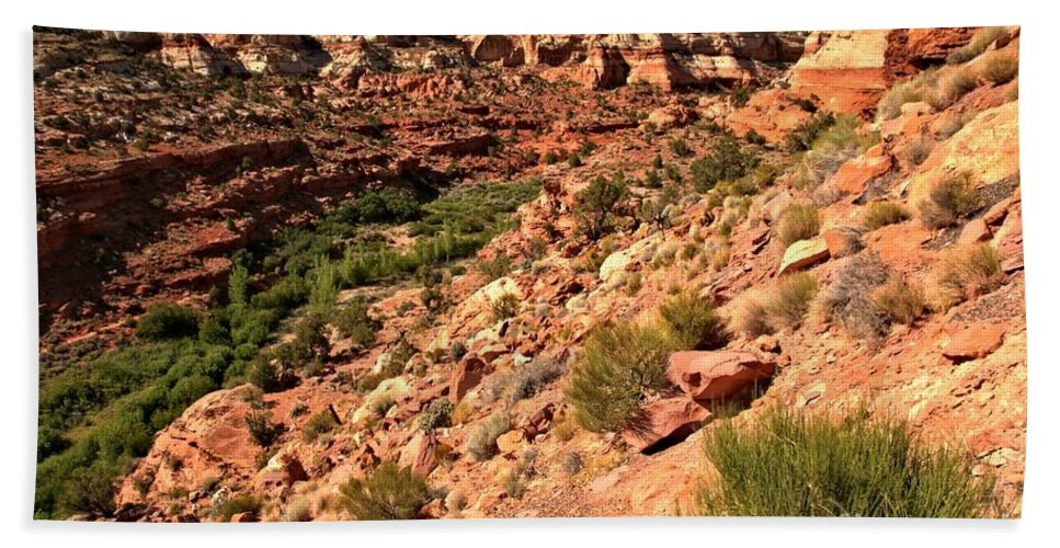 Calf Creek Falls Hand Towel featuring the photograph Canyon At Calf Creek by Adam Jewell