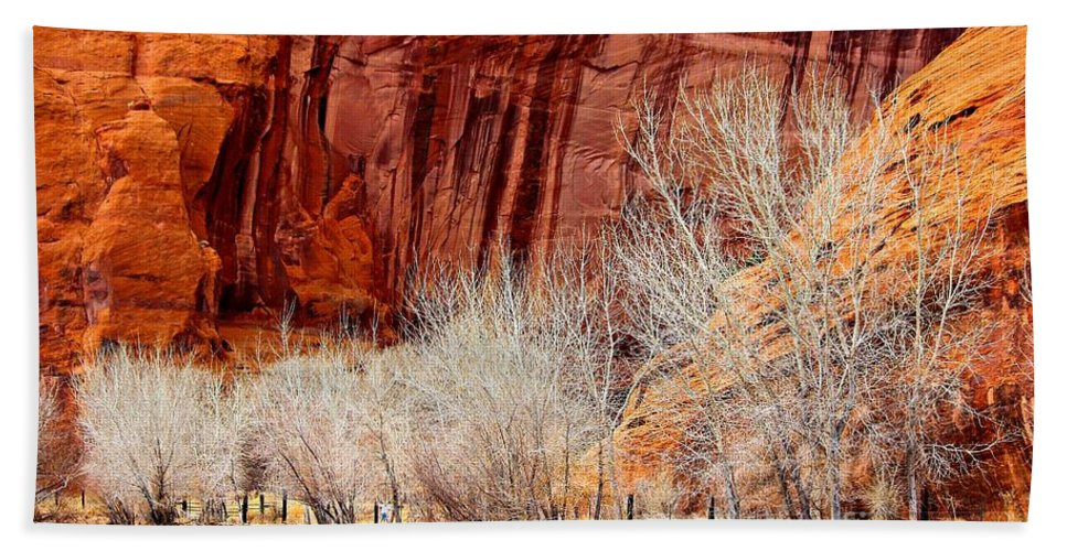 Canyons Bath Towel featuring the photograph Canyon De Chelly - Spring II by Barbara Zahno