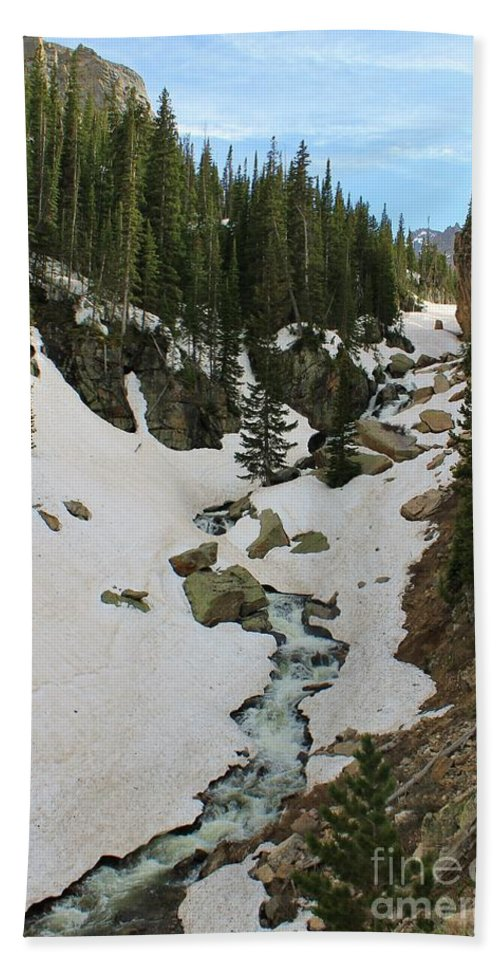 Rocky Mountain National Park Hand Towel featuring the photograph Canyon Scenery by Tonya Hance