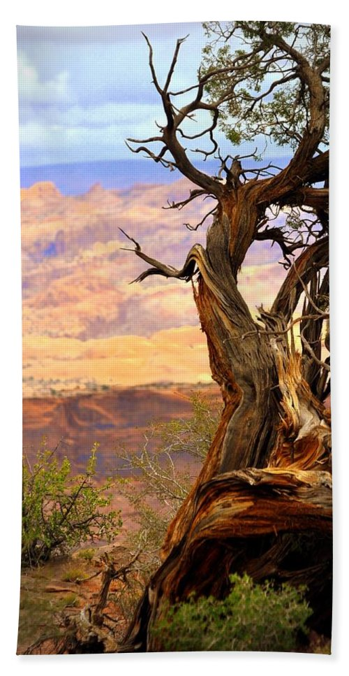 Tree Bath Sheet featuring the photograph Canyon Vista 1 by Marty Koch