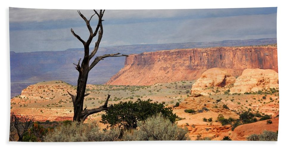 Canyon Hand Towel featuring the photograph Canyon Vista 2 by Marty Koch