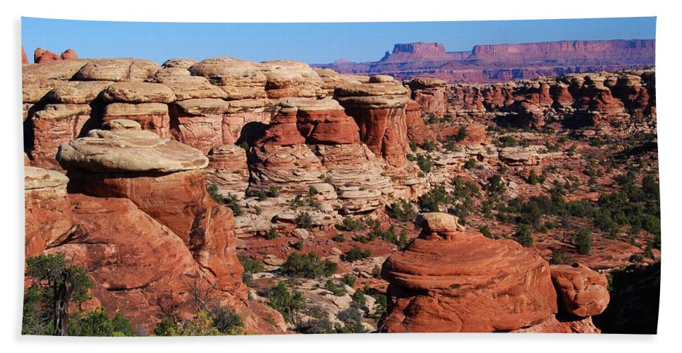 Landscape Photograph Hand Towel featuring the photograph Canyonlands National Park by Cascade Colors