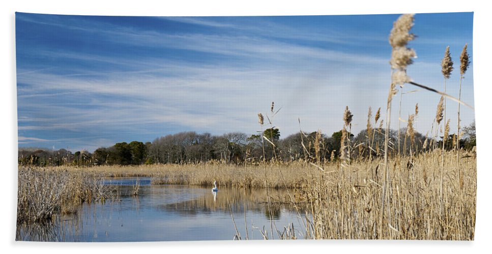Cape May Hand Towel featuring the photograph Cape May Marshes by Jennifer Ancker