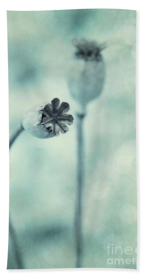 Poppy Bath Sheet featuring the photograph Capsules Series by Priska Wettstein