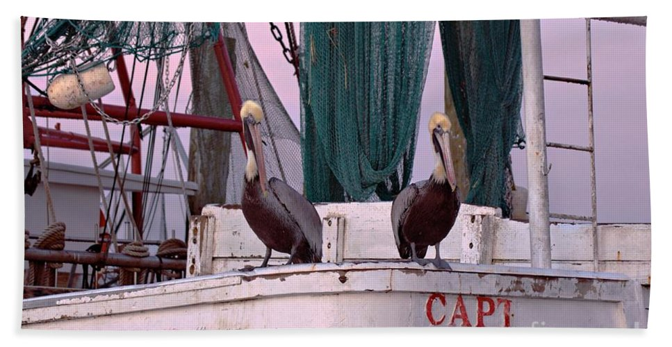Pelicans Hand Towel featuring the photograph Captain Phillips And First Mate by Benanne Stiens