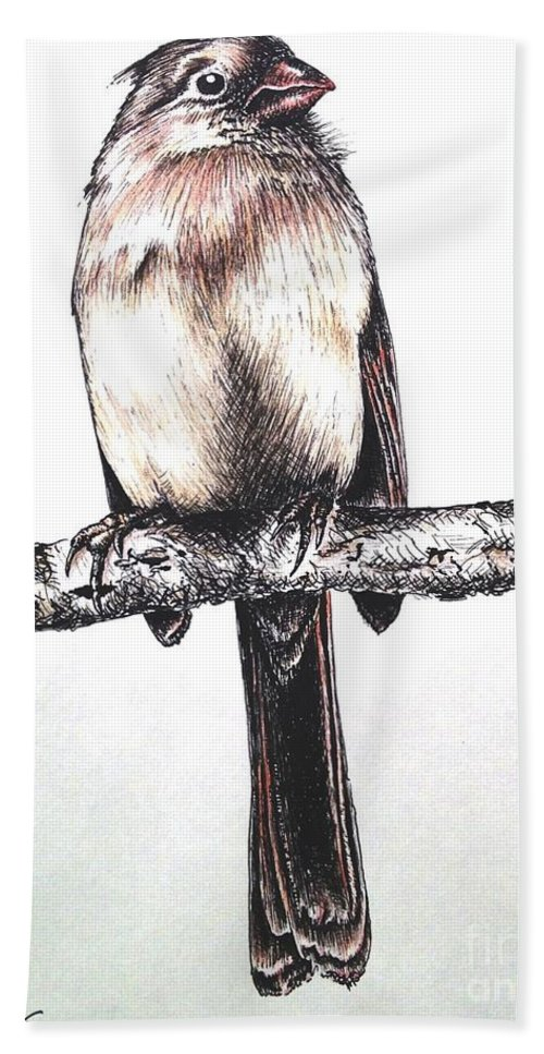 Ink Sketch Hand Towel featuring the drawing Cardinal Female by Katharina Filus