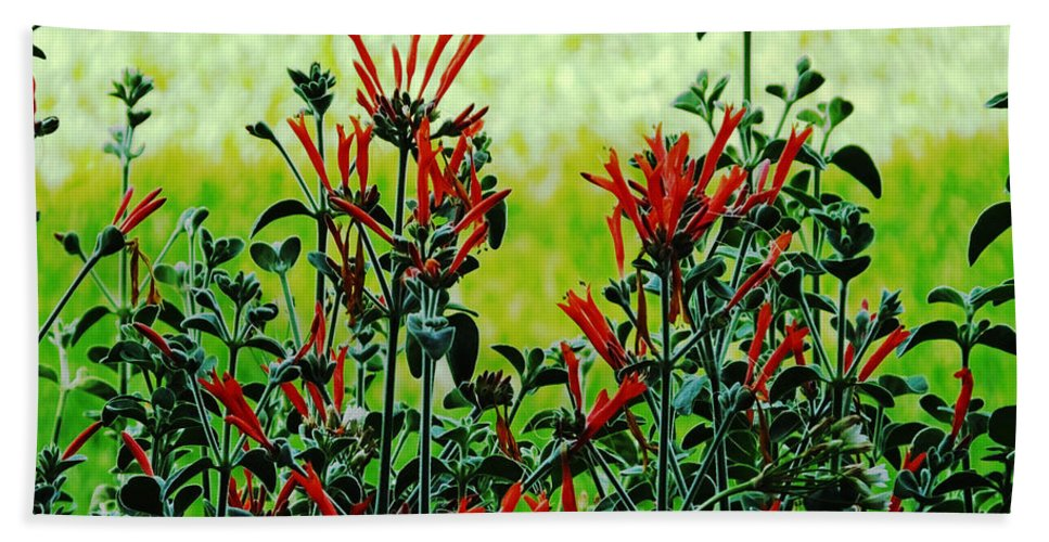 Red Bath Sheet featuring the photograph Cardinal Flowers by Lizi Beard-Ward