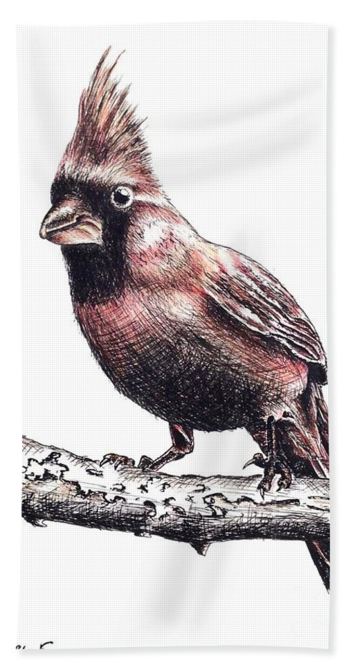 Ink Sketch Bath Towel featuring the drawing Cardinal Male by Katharina Filus